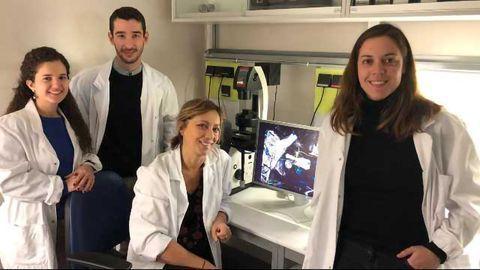 Defective Glial Cells Can Push Neurons Toward Parkinson's Disease
