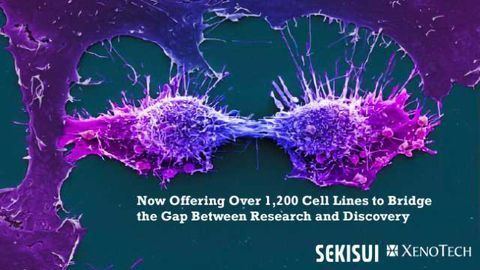 Sekisui XenoTech Expands Partnership for Japanese Collection of Research Bioresources Cell Bank (JCRB) Distribution