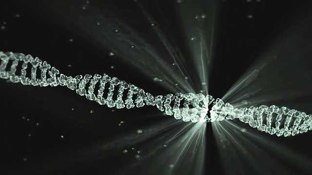 Unlocking the Secret to Gene Activation