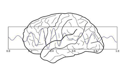 Study Suggests You Can Improve Your Learning Ability by Self-Modulating Your Neural Oscillations
