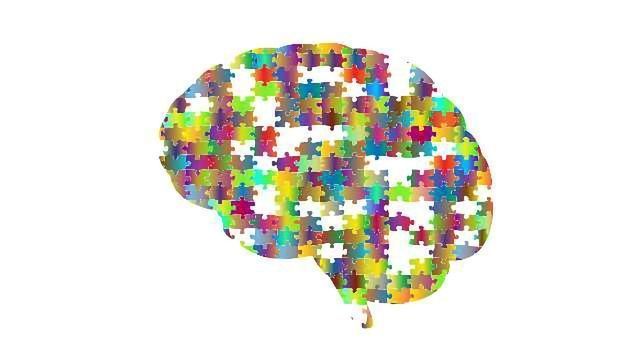 """Mouse Studies Question """"Inhibition"""" Theory of Autism"""