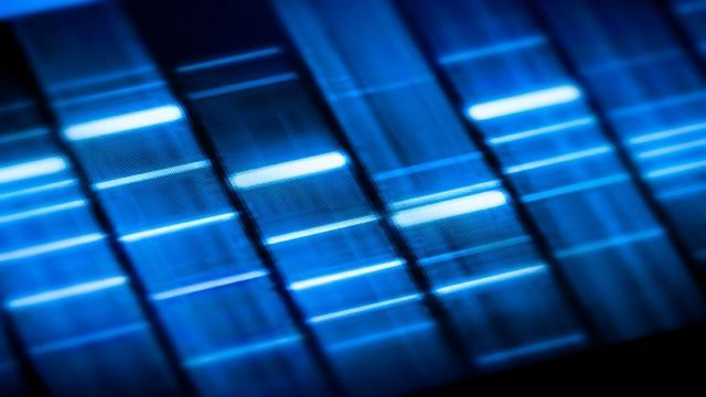 Exploring the Dark Side of the Genome
