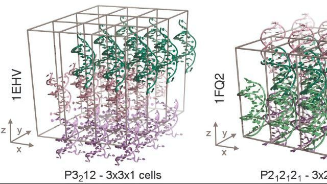 First Stable Simulations of DNA Crystals