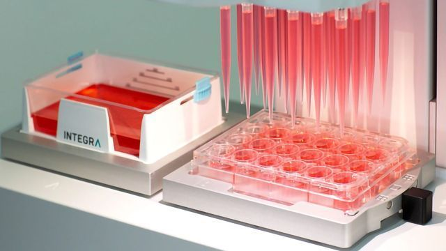 Cell Culture Made Easy with New 24-Channel Pipetting Heads for VIAFLO 96/384