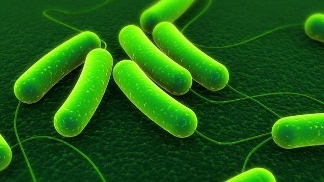 Vanquishing Superbugs