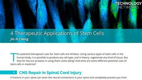 4 Therapeutic Applications of Stem Cells