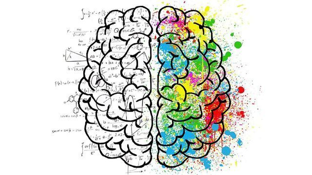 Neuromyths Concerning the Left and the Right Brain
