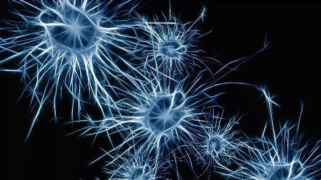 Messenger Molecules Boost ALS Neurons