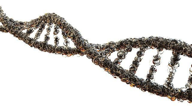 Next-generation Gene Therapy Cassettes for Muscular Dystrophy