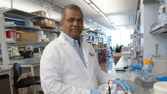Engineered DNA Vaccine Protects Against Emerging Mayaro Virus Infection