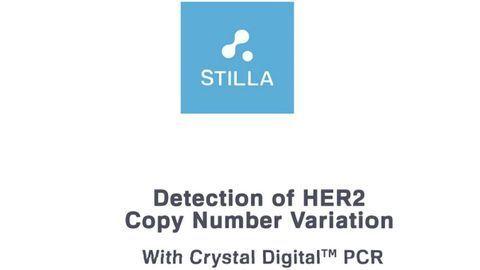 Detection of HER2 Copy Number Variation with Crystal Digital PCR