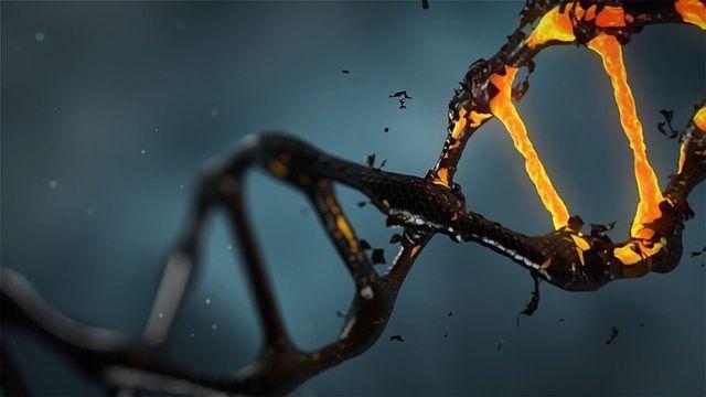 Overcoming CRISPR Challenges