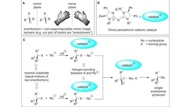 An Asymmetric Chemical Reaction with Intriguing Reaction Pathways