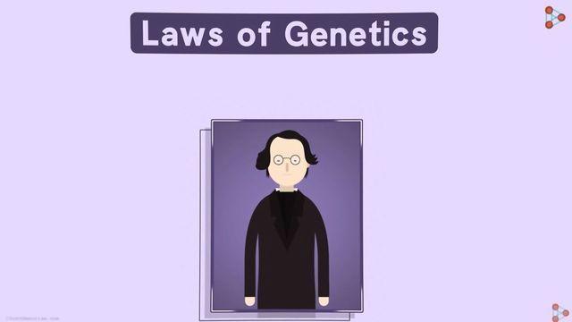 Laws of Genetics