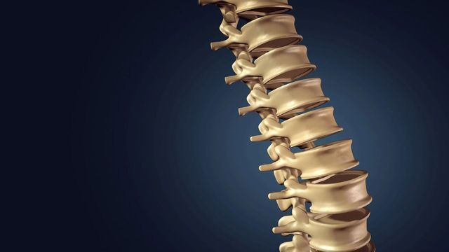 Japan Approves Stem Cell Therapy for Spinal Cord Injuries
