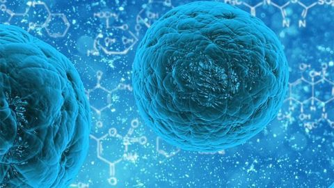 Cell Death Triggers Keep Cancer at Bay in Healthy Cells