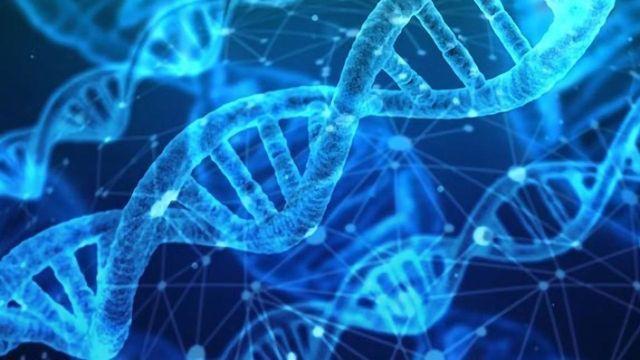 Genetic Test Improves Safety of Inflammatory Bowel Disease Treatments