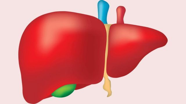 aggressive cancer in liver papillomatosis lung cancer
