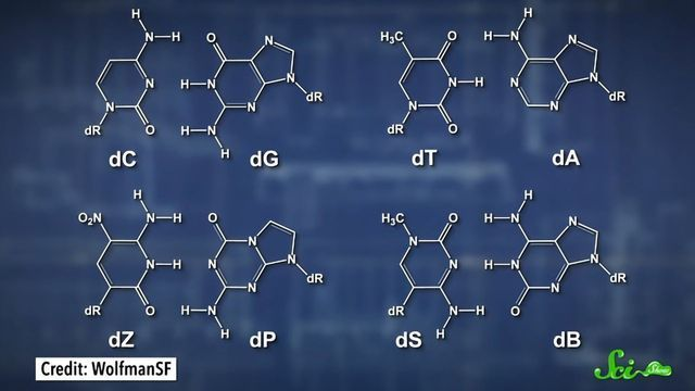 New 8-Letter DNA Rewrites the Genetic Code