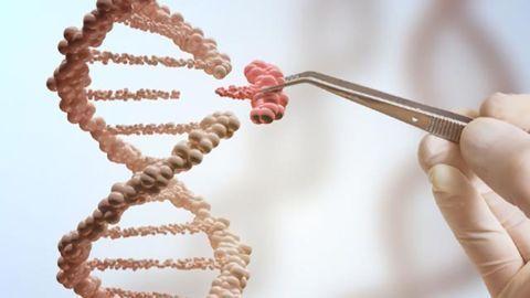 Testing Safety in Gene Editing