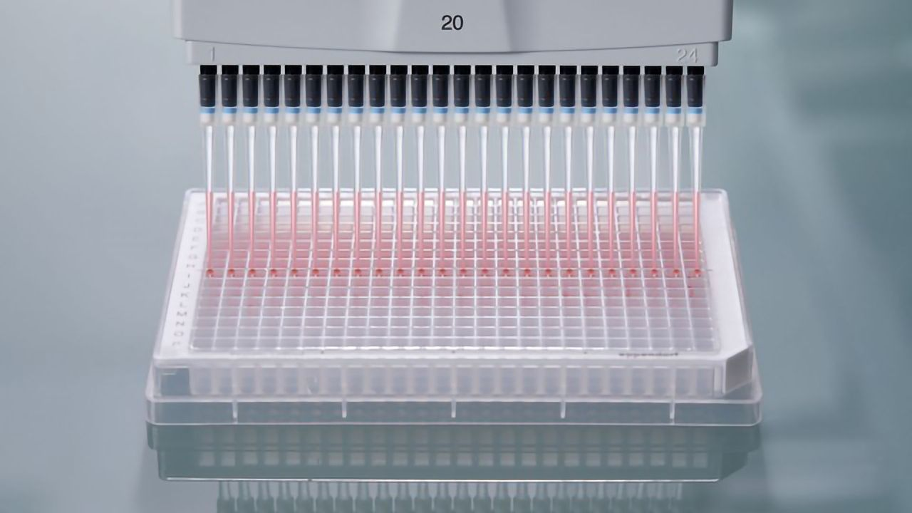Manual Pipetting of 384-Well Plates Made Easy!