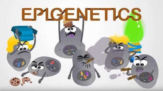 Cancer Treatment: Epigenetics