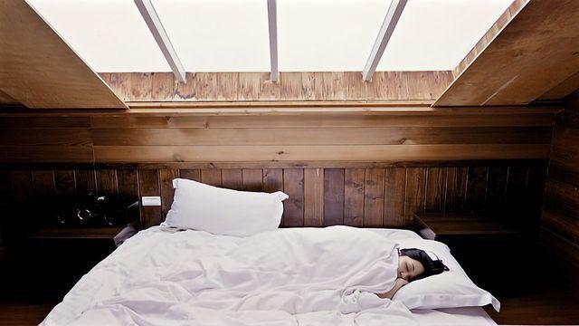 Exploring the Genetics of Sleep
