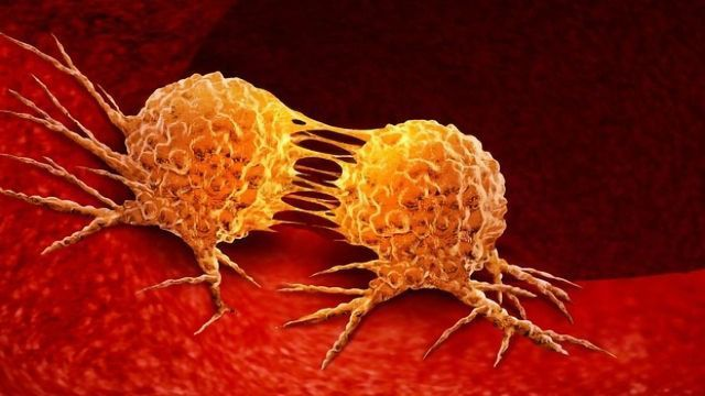 Targeting TGF-β Signaling in Cancer: A Double-edged Sword