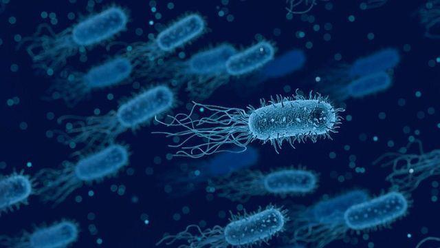 How Antibiotics Change Human Microbiome Diversity Long-term