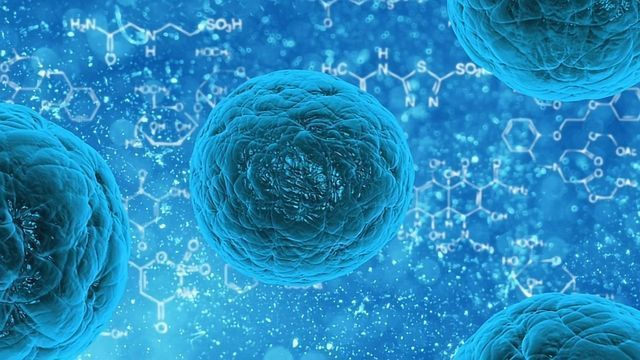 Structure of Molecular Machine Changes Understanding of Cellular Respiration