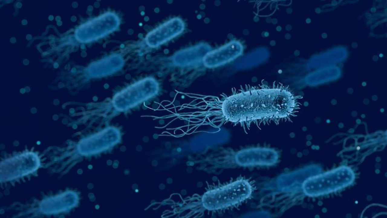 Global Microbial Signatures for Colorectal Cancer Established