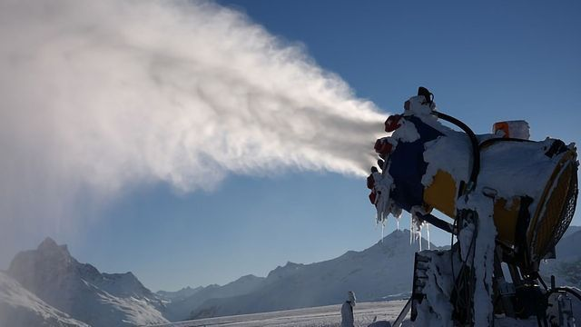 Bacteria and Insects Can Control Ice Formation