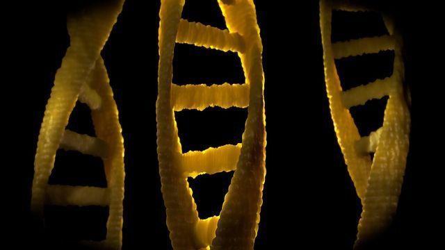Cause of Rare Genetic Metabolic Disorder Identified