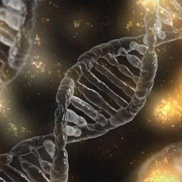 High-risk Genes for Schizophrenia Identified