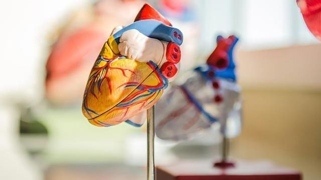 Could an Erectile Dysfunction Drug Treat Heart Failure?