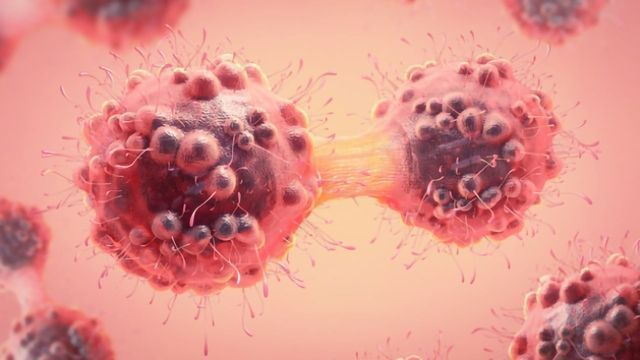 Targeting Tumors and Tracking Their Spread