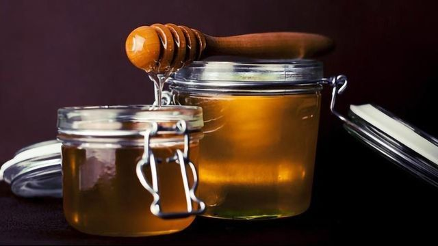Revealing the Medicinal Potential of Honey Through Its Proteins