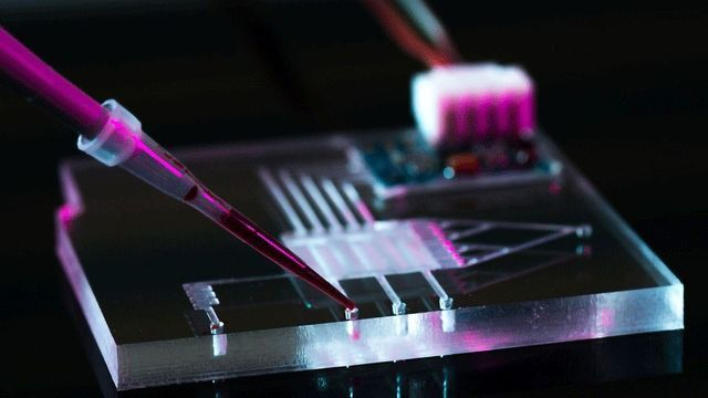 A Microfluidic Valley Is Growing in Europe, and You're Invited