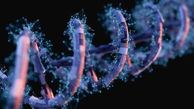 Decade's Worth of Research Outlines How Mutations Lead to