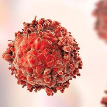 Why Do Hodgkin's Lymphoma Cells Grow Uncontrollably?