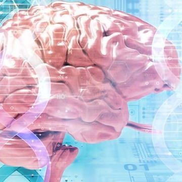Gene Linked to Impaired Memory in Down Syndrome – A Potential Drug Target?