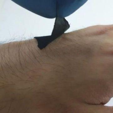 """Octopus """"Suckers"""" Inspire New Wearable Sensors"""