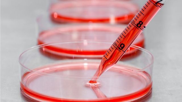 High Performance Feeder-Free Medium for Pluripotent Stem Cell Culture