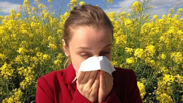Seasonal Allergies More Common in Anxiety Sufferers
