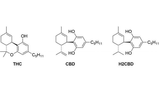Картинки по запросу 8,9-Dihydrocannabidiol
