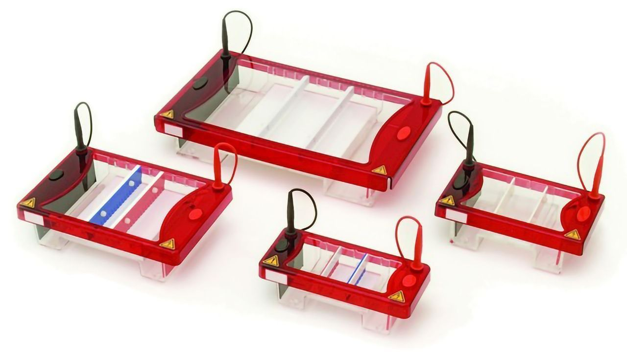 NEW Horizontal and Vertical Gel Electrophoresis Equipment Available from Syngene Saves Time and Effort by Producing Perfect Gels for Syngene Imaging Systems