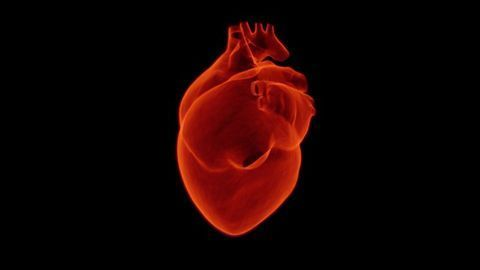 MRI Can Be Used to Study Heart Muscle Activity in Health and Disease