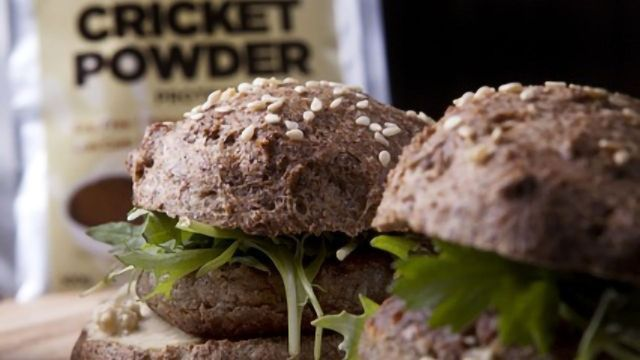 Getting the Best of Both - The Real Future Food Is Lab-grown Insect Meat