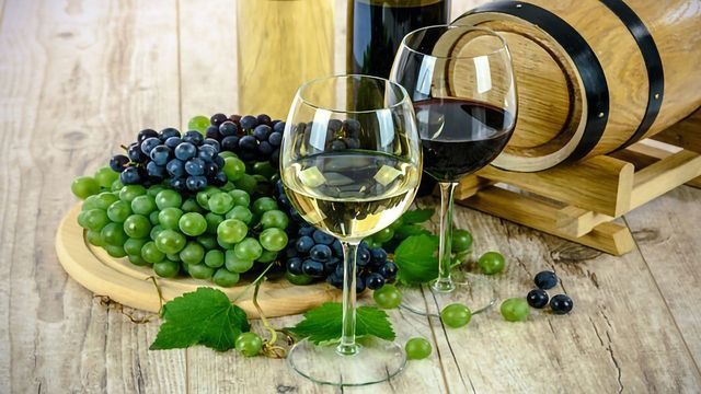 Ancient Grape Seed DNA Reveals Ancestry of Wine Making
