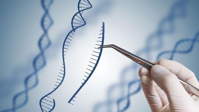 CRISPR-associated Transposase System: New Capabilities in Gene-editing